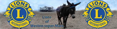 Lions of Weston-super-Mare
